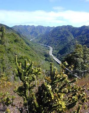Halawa, Hawaii - Interstate H-3 in Halawa Valley looking towards the Koʻolau crest