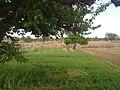 HAYAL MUGHLAN - panoramio (15).jpg