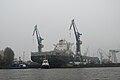 HH-110315-19918-Hafen-MSC-Ilona.jpg