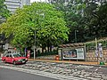 HK Mid-Levels Bonham Road HKU bus stop Taxi trees April 2013.JPG