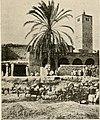 Habitations arabes à Gabès.jpg