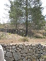 Hadassah Trail P1150415.JPG