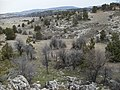 Halkalı cirit alanına doğru - panoramio.jpg