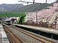 Hanwasen-yamanakadani 223 PICT0049-2.JPG