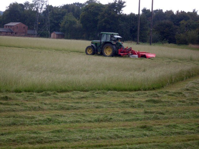 Haymaking - geograph.org.uk - 980046