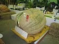 Heavy-lift melon.jpg