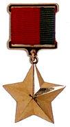 Hero of Belarus medal obverse