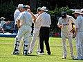Hertfordshire County Cricket Club v Berkshire County Cricket Club at Radlett, Herts, England 071.jpg