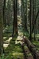 Hidden Grove Park 12 (15201085460).jpg