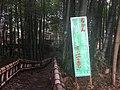 Higashikurume City Takebayashi Park - Jan 24 2021 various 15 14 53 922000.jpeg