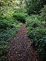 Highdown Gardens, Worthing, path to the Millenium Garden 2.jpg