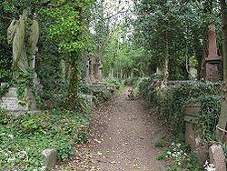 בית הקברות הייגייט
