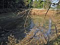 Hiraide Spring 2006-12-02.jpg