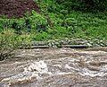 Hochwasser Dreisam (Freiburg im Breisgau) jm57754.jpg