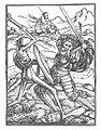 Holbein Danse Macabre 42.jpg
