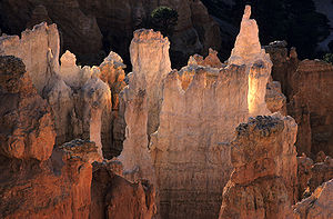 The hoodoos in the Bryce Canyon National Park....