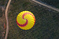 Hot air balloon over National Arboretum 2.JPG