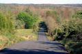 Hudson Road, Bee Spring, Kentucky.png