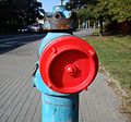 Hydrant Poznan Slowianska.jpg