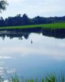 Iğneada Erikli Lake.png