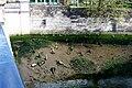 IE-L - Dublin - 2005-05-01 (4887217805).jpg