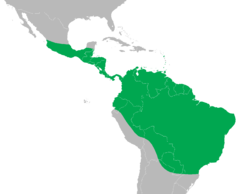 Iguana iguana distribution map.png