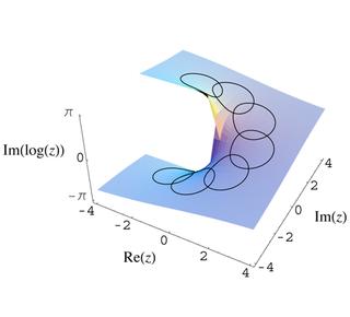 Monodromy Mathematical behavior near singularities