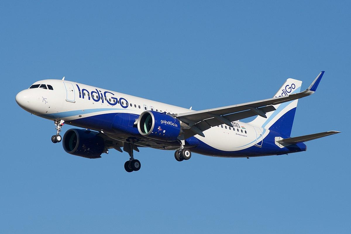 Airbus a320neo family wikipedia for The indigo