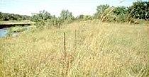 Indian Village Site Witrock Area.jpg