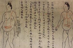 Ishinpō - Image: Isinnhou