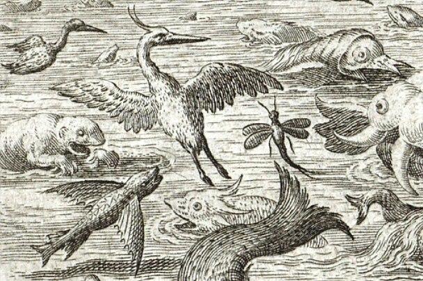 Jan Sadeler after Maarten de Vos Heron Mayfly Flying Fish 1587