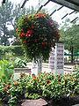 Jardin botanique de Montréal Peace Garden 1.jpg