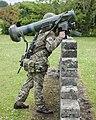 Javelin Firing Positions MOD 45162578.jpg