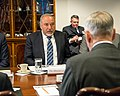 Jim Mattis meets with Avigdor Lieberman 171019-D-GY869-093 (37750504876).jpg