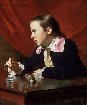 Henry Pelham (engraver) - Henry Pelham as painted by his half-brother John Singleton Copley in The Boy with the Squirrel