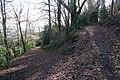 Junction of Clare Walk and Alice Betteridge Walk - geograph.org.uk - 672827.jpg