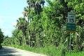 Jungle Trail South - Scenic Road Sign 15mph (43137881211).jpg