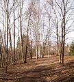 Jyväskylä - track in Tourula.jpg