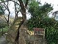 Kakisaki, Shimoda, Shizuoka Prefecture 415-0013, Japan - panoramio.jpg