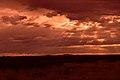 Kalahari landscape, Kalahari, Northern Cape, South Africa (20352580379).jpg