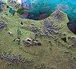Kamchatka Peninsula - Envisat.jpg
