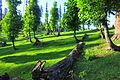Kashmir Pakistan - Arang Kel 36.JPG