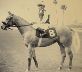 Kaweah Bar Quarter Horse racehorse