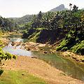 Kerala landscape.jpg