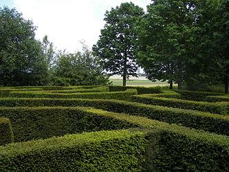Keukenhof maze 2.jpg