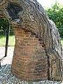 Kew Gardens Pagoda Tree P1170585.JPG