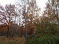 Khimselyshche, Cherkasy, Cherkas'ka oblast, Ukraine - panoramio (250).jpg