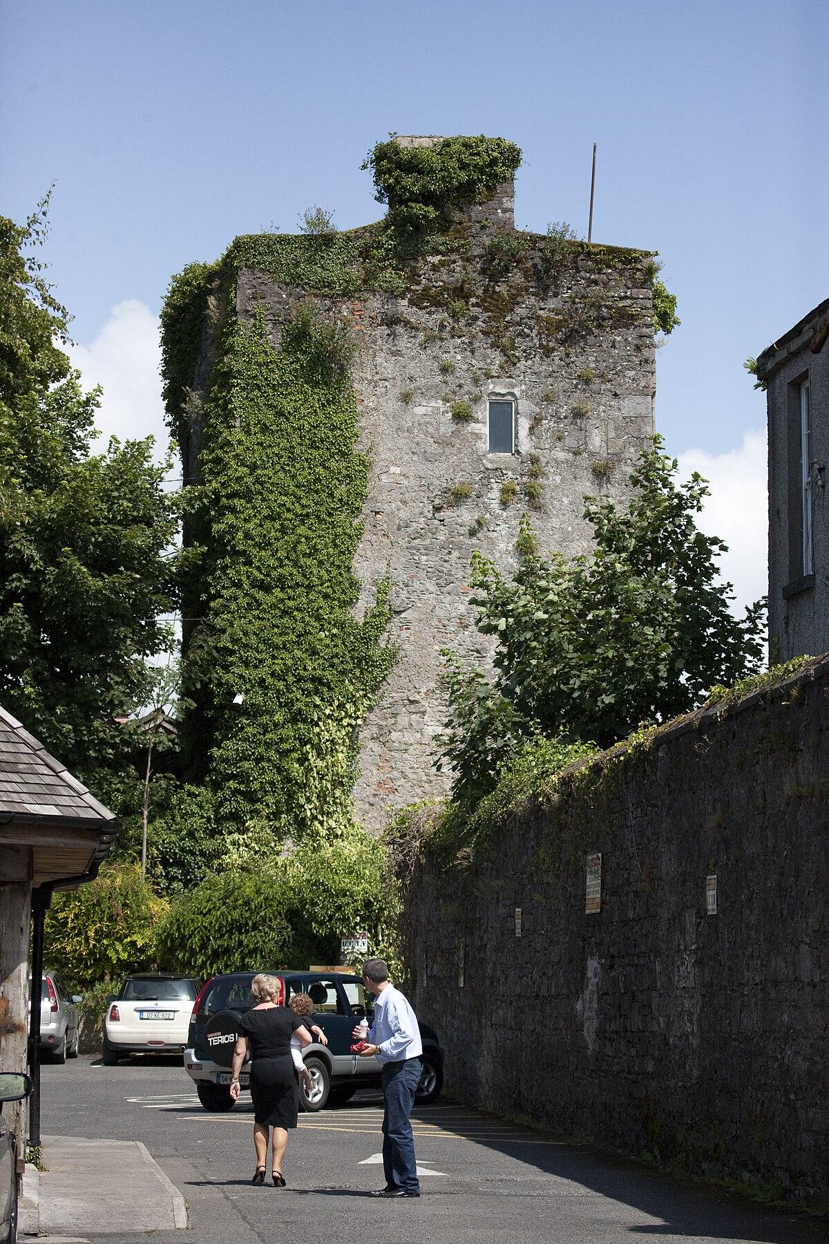 Kildare castle wikidata for Kildare castle