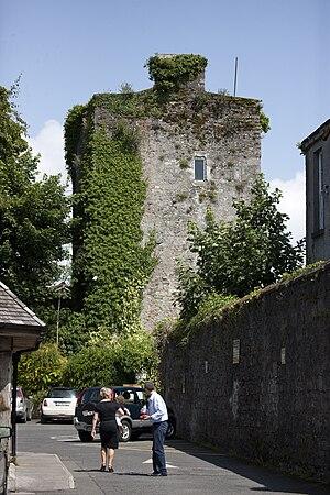 Kildare - Kildare Castle