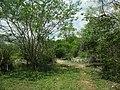 Kintunich, Yucatán (11).jpg